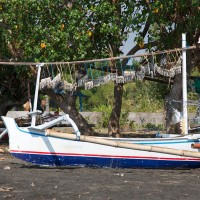 Fishing boat with fish on the beach of Bali.