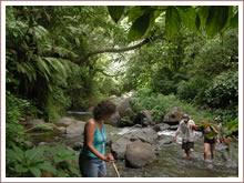 Jungle treks Sawan.