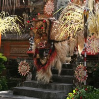 Bali is a lot of culture such as traditional Balinese dances.
